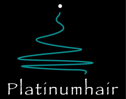 Platinumhair amp Makeup - Hairdresser Find